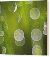 Wet Grass  Wood Print