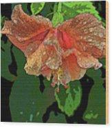 Wet Hibiscus Wood Print