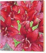 Wet Lilies Wood Print