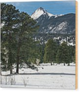 Wet Mountain Valley In Winter Wood Print