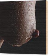 Wet Nip Wood Print