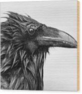Wet Raven Wood Print