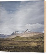 Wet Scotland Wood Print