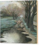 Wet Spring Wood Print