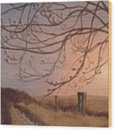 Wet Spring Soft Sunset  Wood Print