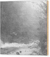 Wet Trail Wood Print