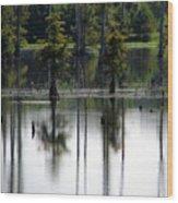 Wetland Wood Print