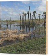 Wetland Palms Wood Print