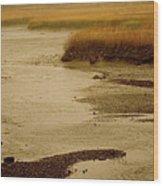 Wetland Stream Wood Print