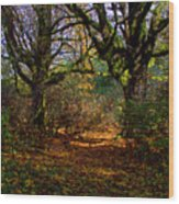 Wetlands In The Fall Wood Print