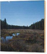 Wetlands In The Woods Wood Print