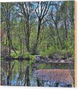 Wetlands Lake Wood Print