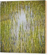 Wetlands Wood Print