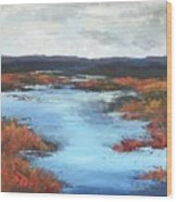 Wetlands Of Washington Wood Print