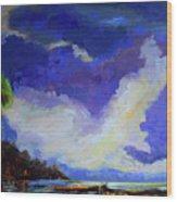 Wetlands Sky  Wood Print
