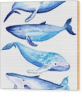 Whale Friends Wood Print