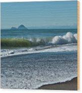 Whale Island Wood Print