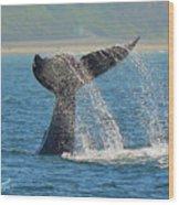 Whale Waterfall Wood Print