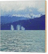 Whales Blowing Wood Print