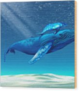 Whales Wood Print by Corey Ford