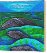 Whales In Glacier Bay  Alaska Wood Print by Al Goldfarb