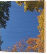 What A Day - Photograph Wood Print