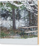 What A Day For A Picnic Wood Print