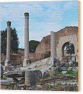 Basilica Aemilia Wood Print