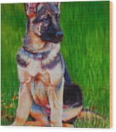 What Waits For You In The Green Green Grass Of Home Wood Print