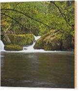 Whatcom Creek Gorge Wood Print