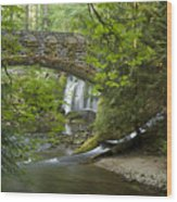 Whatcom Falls Bridge Wood Print