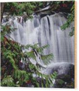 Whatcom Falls Cascade Wood Print