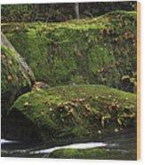 Whatcom Falls Park Wood Print