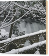 Whatcom Falls Winter 08 Wood Print by Craig Perry-Ollila