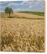 Wheat And A Tree Wood Print