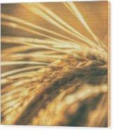 Wheat Ear Wood Print