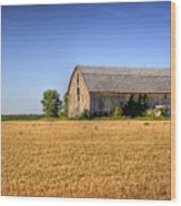 Wheat Field Barn Wood Print