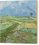 Wheat Fields After The Rain, The Plain Of Auvers Wood Print