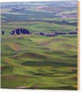 Wheat Fields Of The Palouse - Eastern Washington State Wood Print