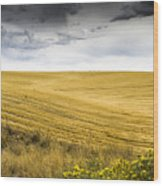 Wheat Fields With Storm Wood Print