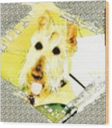 Wheaten Scottish Terrier - During Sickness And Health Wood Print