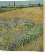 Wheatfield Arles, June 1888 Vincent Van Gogh 1853 - 1890 Wood Print