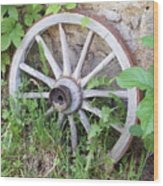 Wheel Walk Wood Print