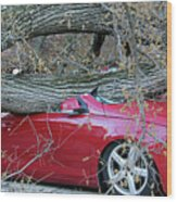 When A Tree Falls Wood Print