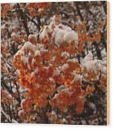 When Fall Meets Winter Wood Print