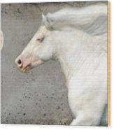 When Horses Dream Wood Print