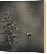 When Once A Bee Flew Wood Print