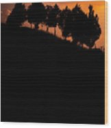 When Silhouettes Come Out Coffee Table Book Cover Wood Print