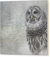 When Winter Calls Owl Art Wood Print