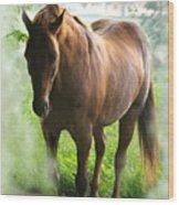 When You Dream Of Horses Wood Print
